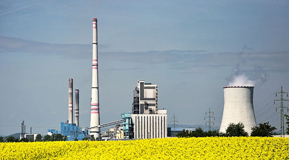 biofuel-2362512